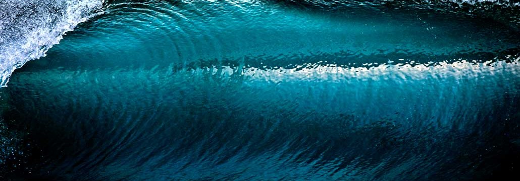 David Pu'u -- Wave Photo