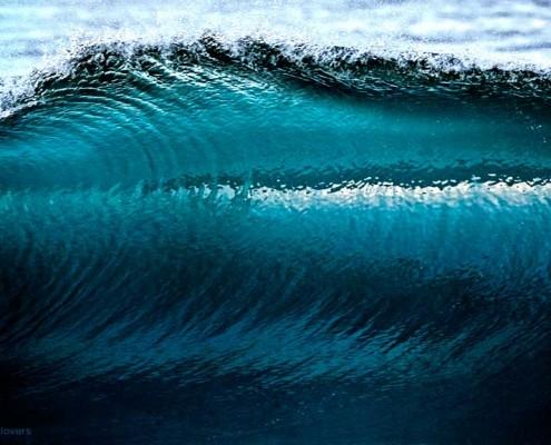 David Pu'u -- Wave Photo